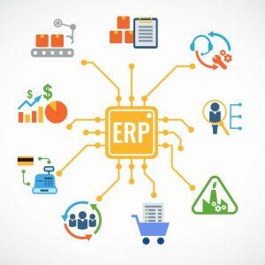 ERP ecosystem